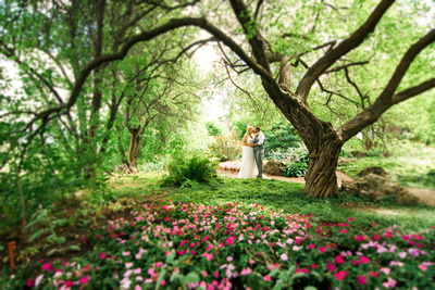 Summerland Wedding - Summerland Ornamental Gardens
